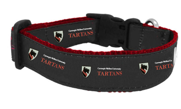Dog Collar: Medium