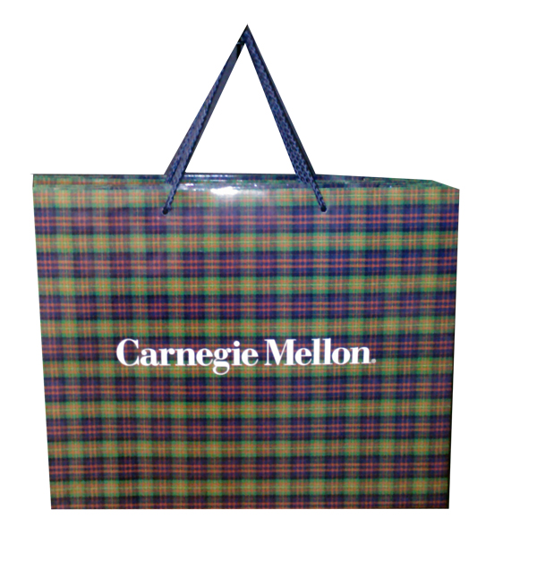 Image For Gift Bag: Plaid 16 x 6 x 13